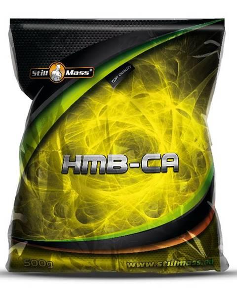 Stillmass HMB-CA - Still Mass  500 g Orange