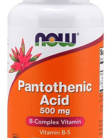 Now Foods Kyselina Pantoténová 500 mg 100 kaps.
