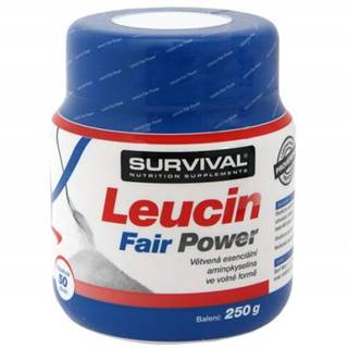 Glutamin Fair Power + Leucin Fair Power