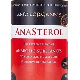 Anasterol - Androrganics 90 g